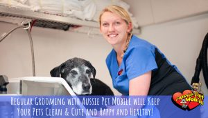 regular grooming with aussie pet mobile will keep your pets clean and cute and happy and healthy